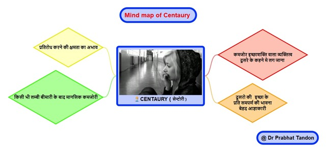 mind map centaury